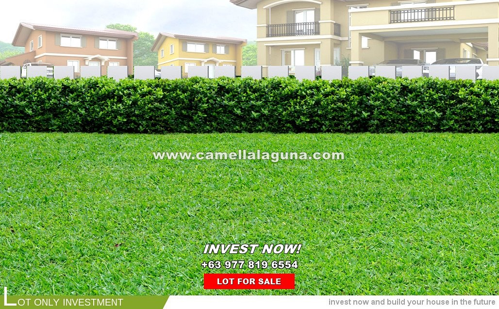 Lot House for Sale in Laguna
